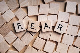 Article Should we fear?